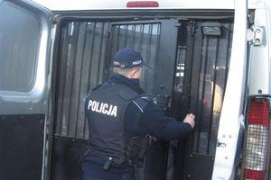 Poszukiwany mężczyzna zatrzymany podczas interwencji w…piwnicy
