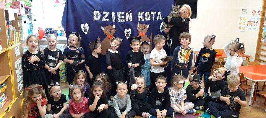 Światowy Dzień Kota w Przedszkolu nr 2
