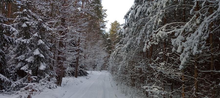 Nowosady zimą