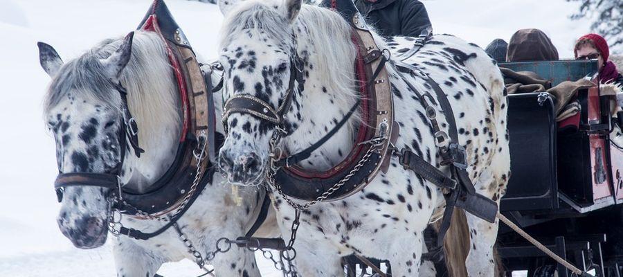 Zima w Polsce dostarcza pięknych widoków. Taka aura wywołuje też wspomnienia...