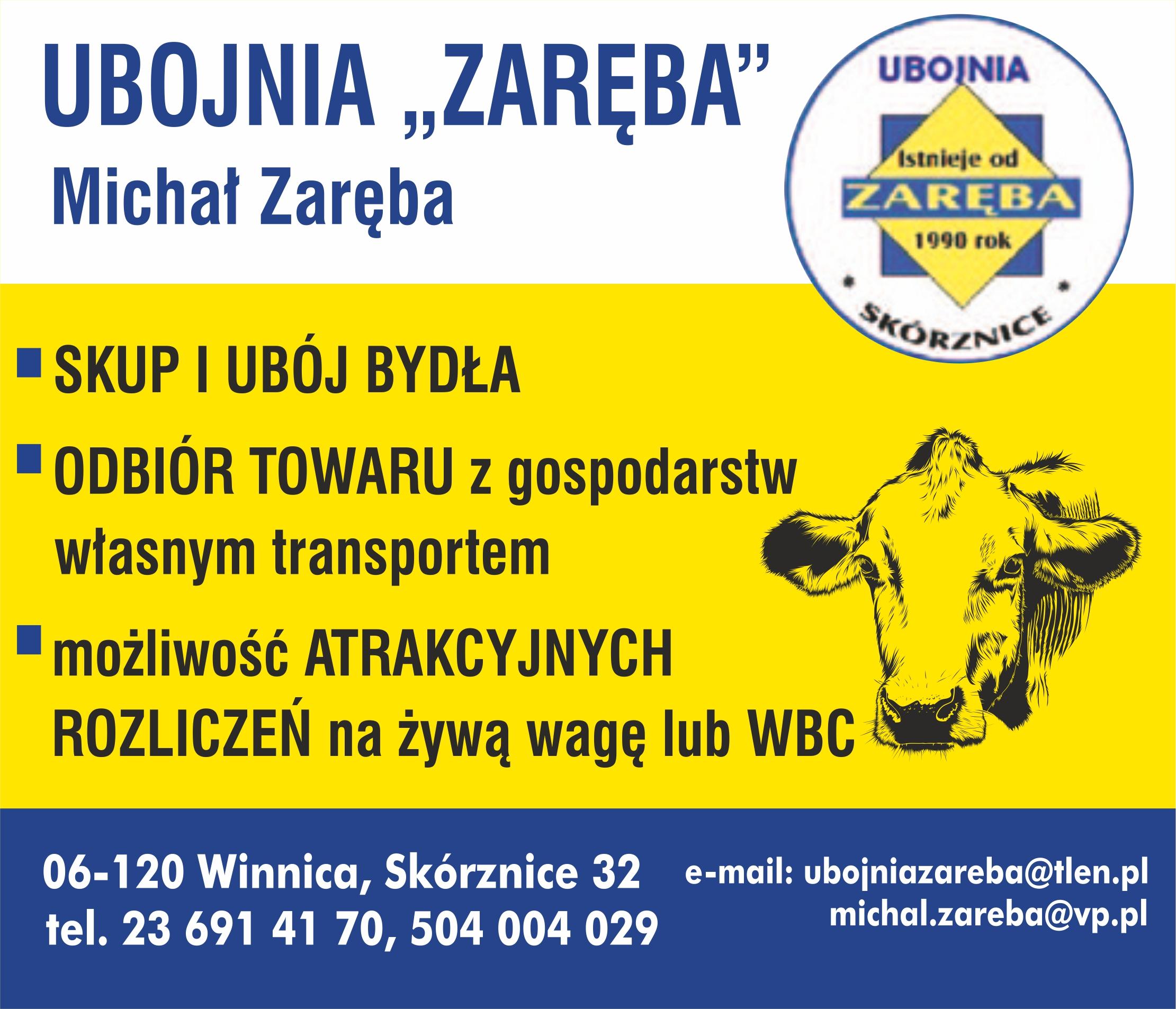 https://m.wm.pl/2021/03/orig/ubojna-zareba-km-695241.jpg