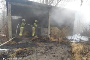 Podpalenia czy samozapłony? Policja bada sprawę pożarów w gm. Kisielice [zdjęcia]