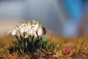 Gazeta za zdjęcie: Wiosna pełną parą w gminie Piecki
