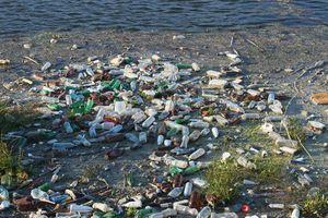 Wielkie sprzątanie w Olsztynie