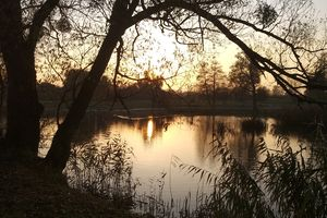 Braniewo: Jezioro Piekiełko o wschodzie słońca