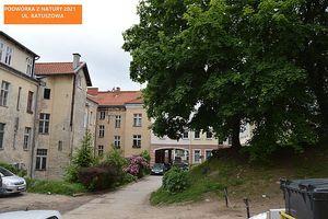 Kolejne podwórka w Olsztynie zmienią swój wygląd