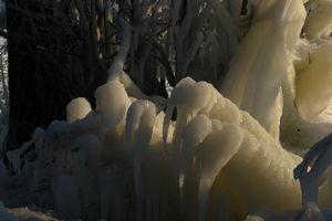 Gazeta za zdjęcie - Potwory znad jeziora Niegocin