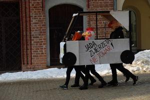 Tajemnicze zwierzęta protestowały w centrum Olsztyna