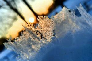 Paustry: zima nie odpuszcza