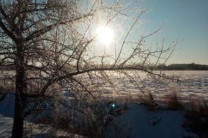 Prenumerata za zdjęcie: wspomnienie zimy