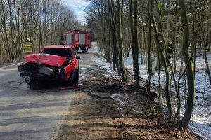 Dwie osoby poszkodowane w wypadku