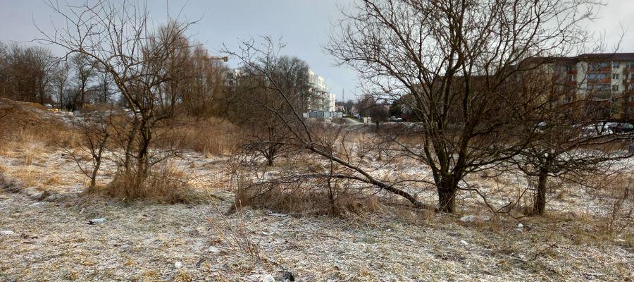 Działka przy al. 1 Maja w Giżycku została wyceniona na około 4 mln zł
