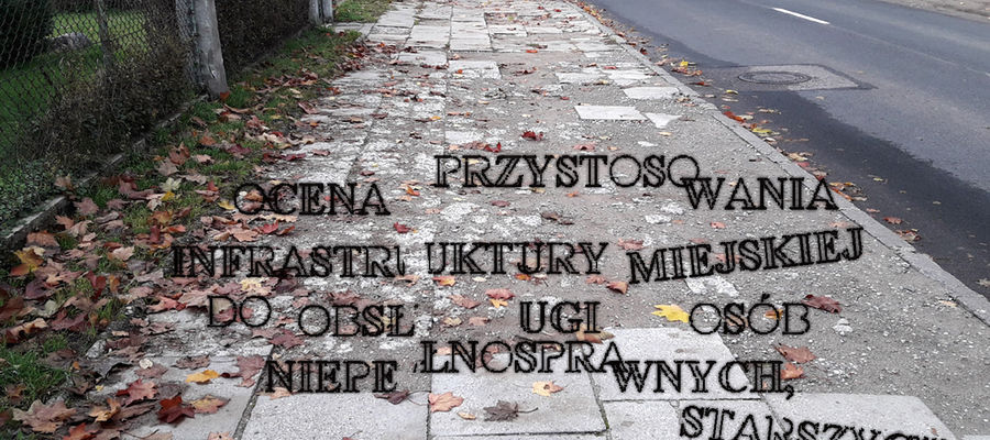 Wpis Mirosława Arczaka dotyczący dokumentu na temat oceny infrastruktury dla osób niepełnosprawnych