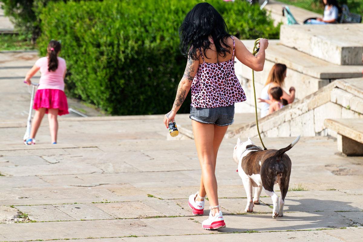 10 kwietnia weszły w życie nowe wysokości mandatów za nieprawidłową opiekę nad zwierzętami