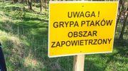 Ptasia grypa w Kiełpinach i Leźnie. Dwa ogniska w pobliżu naszego powiatu