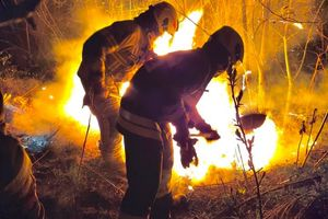 Strażacy OSP w Bisztynku ugasili ogień w okolicy cmentarza