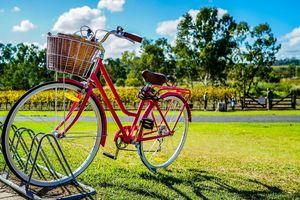 Czeka nas rowerowy boom!