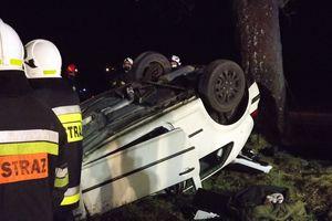 Samochód osobowy uderzył w drzewo w Zwiniarzu