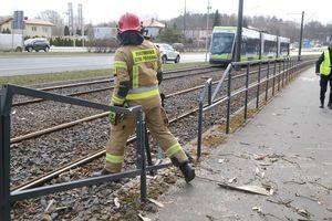 Ruch tramwajów w Olsztynie wstrzymany. Na trakcję spadło drzewo [ZDJĘCIA]