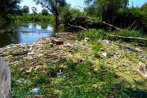 Ktoś bezmyślnie naśmiecił, ktoś z wyobraźnią ekologiczną posprząta...