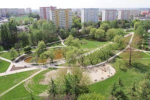 Zielony Olsztyn zachęca: wybierzmy nowe pomniki przyrody
