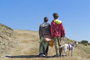 Zaostrzenie kar dla właścicieli psów