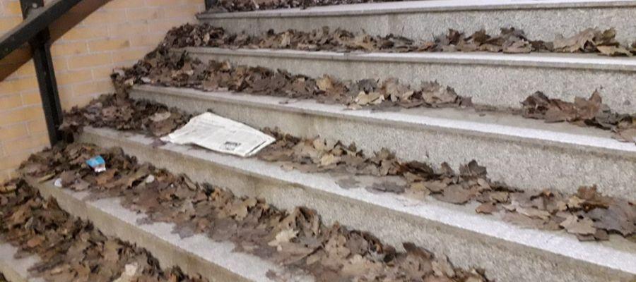 Zalegające liście w przejściu podziemnym