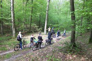 Na rowerach spędzili majówkę w lesie