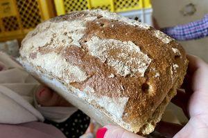 Na żywej wodzie chleb pachnie zdrowiem