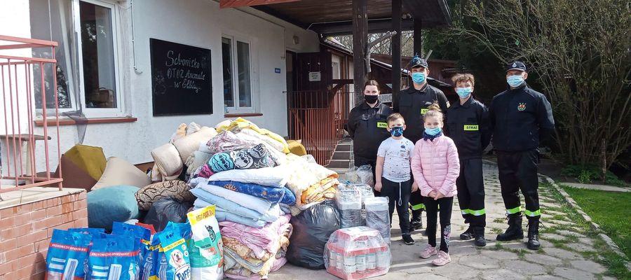 Strażacy ochotnicy z Gronowa Elbląskiego zorganizowali zbiórkę na rzecz bezdomnych zwierząt