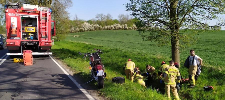 Do zderzenia motocykla z jeleniem doszło na drodze wojewódzkiej nr 521, na trasie Iława — Susz w okolicach miejscowości Ulnowo