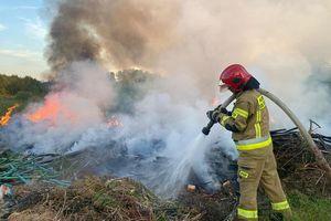 Pożar dzikiego składowiska odpadów