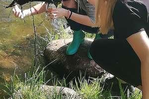 Uczniowie I LO zbadali jakość wód rzeki Sapiny
