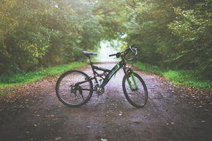 Nietrzeźwy rowerzysta wyeliminowany z dalszej jazdy