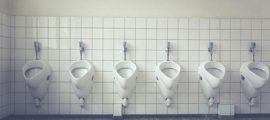 Toaletami zajmą się... prawnicy?