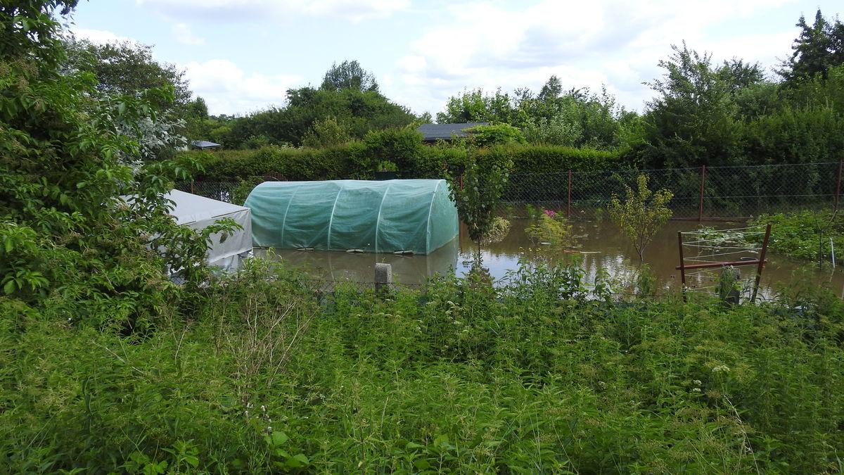 Zalane ogródki działkowe w Sędławkach