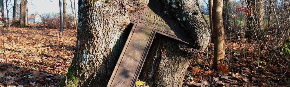 Atrakcja na środę: włóczęga po cmentarzu