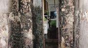 Przy drzwiach do budynku palił się materac [ZDJĘCIA]