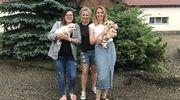 Założycielki Fundacji Psiaki z Warmii i Mazur: Pomaganie jest naszą pasją [ROZMOWA]