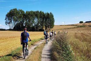 Wycieczka rowerowa Szlakiem Jezior Ziemi Lubawskiej przejedzie przez nasz powiat. Warto dołączyć!