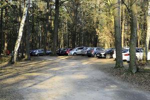 40 aut źle zaparkowanych nad Jeziorem Hartowieckim