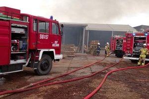Płonął tartak w Brzoziu, straty są znaczne. Są już pierwsze sygnały pomocy firmie
