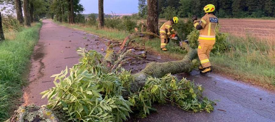 Strażacy usuwali drzewa. Jedno spadło na auto