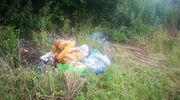 Kolejne dzikie wysypisko śmieci namierzone [ZDJĘCIA]