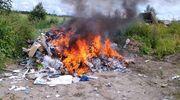 Czy śmieci zostały podpalone celowo? [ZDJĘCIA]