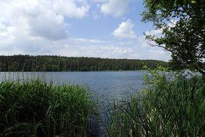 Topielec w jeziorze Świętym w gminie Olsztynek. Ciało zauważył wędkarz