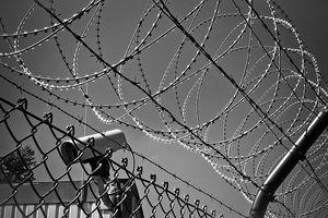 Rząd chce stanu wyjątkowego z powodu migrantów na granicy z Białorusią