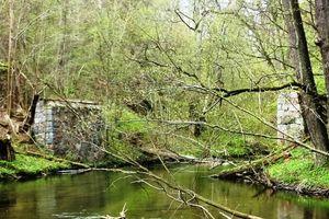 Warto zobaczyć w piątek: zerwany most na Łynie