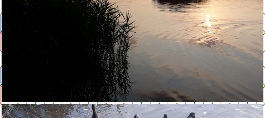 Zachód słońca nad jeziorem Omulew