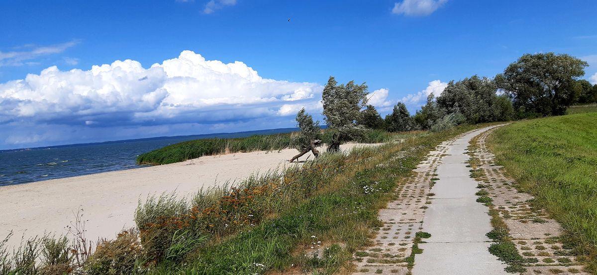 Droga rowerowa z Suchacza do Tolkmicka nad Zalewem Wiślanym